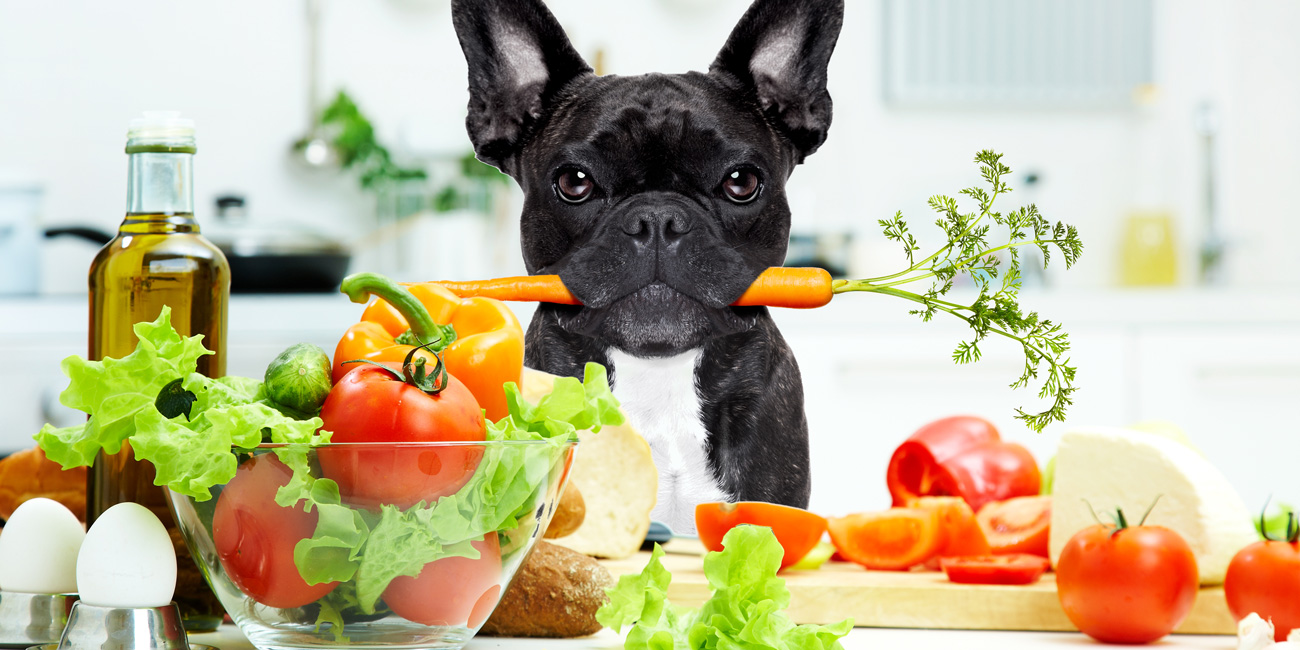 Veggies for dogs